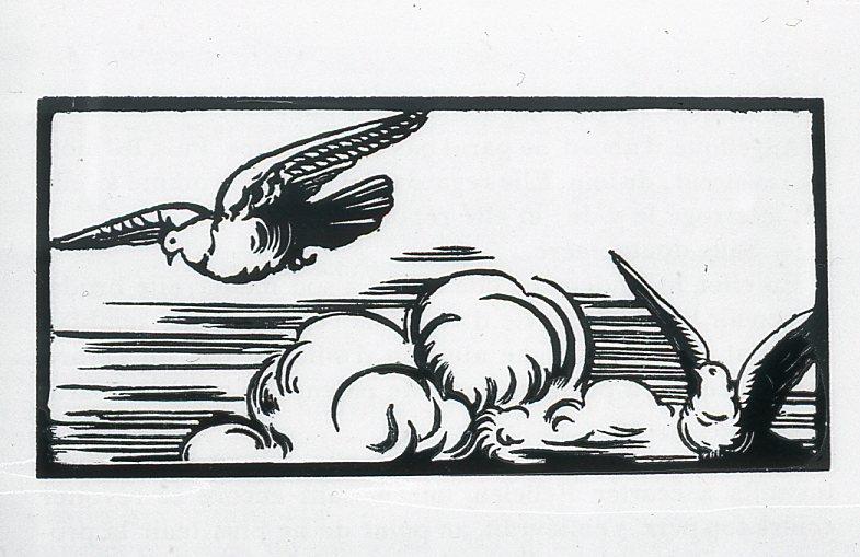 Image - Deux oiseaux en vol